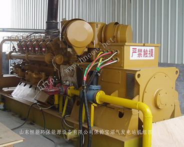 沼气发电站及干法脱硫